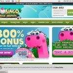 Dinobingo Sign Up Offers