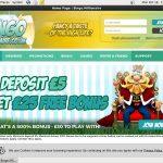 Bingo Millionaire Top Bets