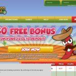 Bingogringo 1st Deposit Bonus